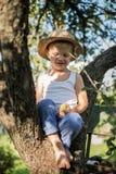 Schöner kleiner Junge, der auf einem Baum sitzt und Apfel hält Stockbild