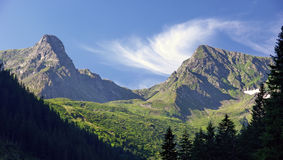 Schöner Morgen in den Bergen Stockbild