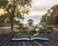 Schöner nebeliger nebelhafter Herbstsonnenaufgang über Landschaft surroundin Stockfotografie