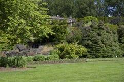 Schöner Rasen im Garten Stockfotos