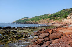 Schöner tropischer Strand in Anjuna, Goa, Indien Lizenzfreies Stockbild