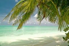 Schöner tropischer Strand auf einer maledivischen Insel Stockfotografie