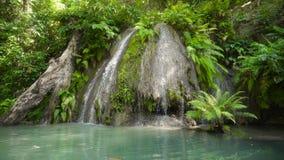 Schöner tropischer Wasserfall Insel Philippinen Cebu stock footage