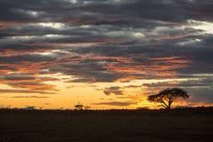 Schöner vibrierender bunter Sonnenaufgang Lizenzfreie Stockfotos