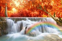 Schöner Wasserfall mit Weichzeichnung und Regenbogen im Wald Stockfotos