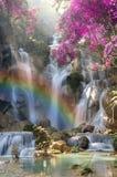 Schöner Wasserfall mit Weichzeichnung und Regenbogen im Wald Stockfotografie
