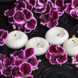 Schönes Badekurortstillleben der Pelargonienblume und -kerzen im rippl Stockfotografie