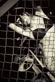 Schönes junges Mädchen, das hinter dem metallischen Gitter steht. Schwarzweiss Stockbild
