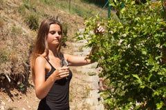 Schönes junges Mädchen malt einen hölzernen Gazebo Sommerarbeit im Garten Schöner Brunette beschichtet Holzbalken Lizenzfreie Stockfotografie