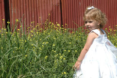 Schönes Kind Stockfotografie