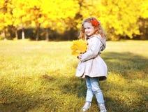 Schönes kleines Mädchen des Herbstfotos mit gelben Ahornblättern Stockfotografie