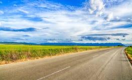 Schönes Landschaftsfeld des Weizens, der Straße, der Wolken und der Berge Lizenzfreie Stockfotos