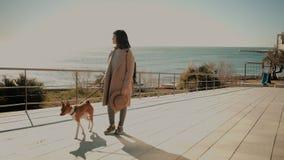 Schönes Mädchen geht mit ihrem Hund nahe Meer stock video