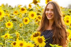 Schönes Mädchen mit Sonnenblumen Lizenzfreie Stockfotos