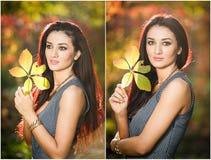 Schönheit in der grauen Aufstellung im herbstlichen Park Junge Brunettefrau, die ein Blatt hält und Zeit im Herbst verbringt Stockfoto