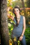 Schönheit in der grauen Aufstellung im herbstlichen Park Junge Brunettefrau, die Zeit im Herbst nahe einem Baum im Wald verbringt Stockfotos