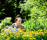 Schönheit in der Natur Stockfotos