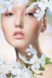 Schönheit der Frau und der Kirschblütes Lizenzfreie Stockfotos