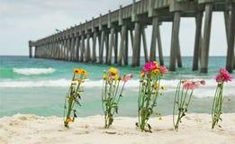 Schnitt-Blumen durch Pier Lizenzfreie Stockfotografie