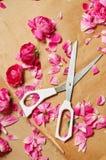 Schnitt der rosafarbenen Blumenblätter für Störung stockfotos