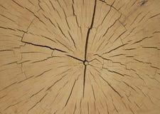 Schnitt des alten Holzes stockbild