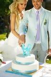 Schnitt des Kuchens Stockbild