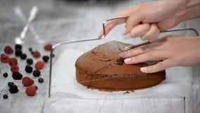 Schnitt des Kuchens auf Schichten Herstellung der Schokoladen-Torte serie stock footage