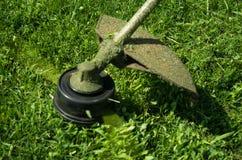 Schnitt des Rasens mit dem mechanischen Mäher stockfotografie