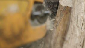 Schnitt durch Holz mit Kettensäge in der Zeitlupe stock video