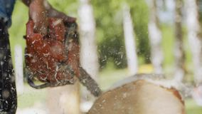 Schnitt durch Holz mit Kettens?ge in der Zeitlupe Ein Mann sägt einen Klotz mit einer Kettensäge stock video