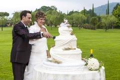 Schnitt einer Hochzeitstorte Lizenzfreie Stockfotografie