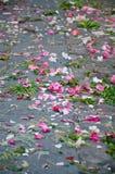 Schnittblumen auf der Straße stockfotos
