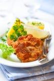 schnitzel λουκάνικο Στοκ Εικόνες