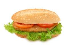 schnitzel хлеба Стоковое Изображение