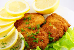 Schnitzel. With lemon and lettuce Royalty Free Stock Photos