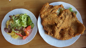 Schnitzel. Viena Schnitzel with salads on the separate dish Stock Image