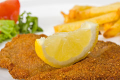Schnitzel. Detail of a viennese schnitzel on a plate Stock Photography