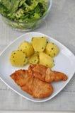 Schnitzel de salchicha de Frankfurt Imagenes de archivo