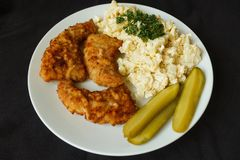 Schnitzel and egg salad Royalty Free Stock Photography