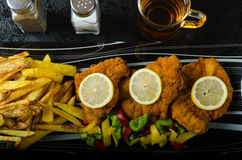 Schnitzel with french fries Stock Images