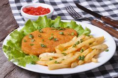 Schnitzel with french fries and sauce on a white plate Royalty Free Stock Photo