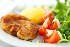 Schnitzel with fresh vegetables Royalty Free Stock Photo