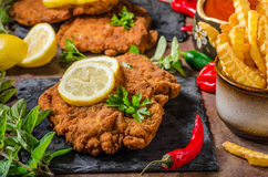 Schnitzel with fries, salad and herbs Royalty Free Stock Photo