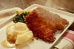 Schnitzel with Mashed Potatos on a white plate. Schnitzel with Mashed Potatos, Gravy, Pan Roasted Balsamic Kale and a lemon wedge on a white plate Stock Images