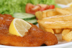 Schnitzel meal with french fries and lettuce on plate Royalty Free Stock Photography