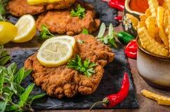 Schnitzel med småfiskar, sallad och örter Royaltyfri Foto