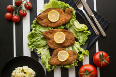 Schnitzel mit Kartoffelsalat stockfotos