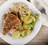 Schnitzel With Potato Salad and Sauerkraut Stock Image