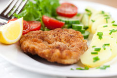 Schnitzel with potatoes and salad Stock Photography