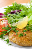 Schnitzel and Salad. Schnitzel with salad, garnished with lemon and parsley Royalty Free Stock Image
